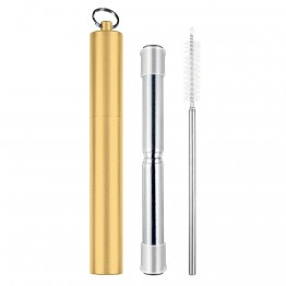 Avanti Telescopic Stainless Steel Straw in Metal Travel Case - Champagne Gold