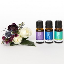 Eco Aroma Travel Essential Oils Pack - Lavender, Sinus Clear, Rosemary