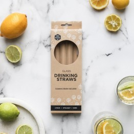 Ever Eco Straight Glass Straws 4 pack + cleaning brush
