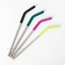 Klean Kanteen Stainless Steel Straws 4 pack with silicone tips - Multi Colour