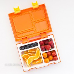 Raine Beau Bento Box - Orange
