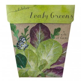 Sow n Sow Gift of Seeds - Leafy Greens
