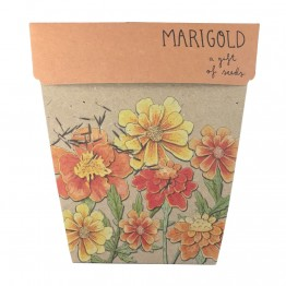 Sow n Sow Gift of Seeds - Marigold