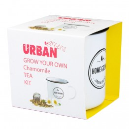 Urban Greens Grow Your Own Tea Kit - Chamomile