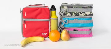 What Fits Inside the Fridge To Go Medium Insulated Lunch Bag