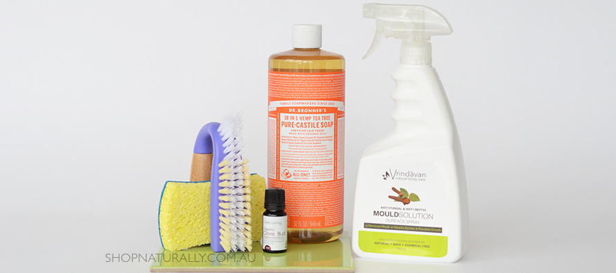 Cleaning mould with natural cleaning products