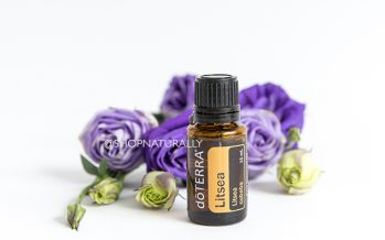 Litsea essential oil now available.